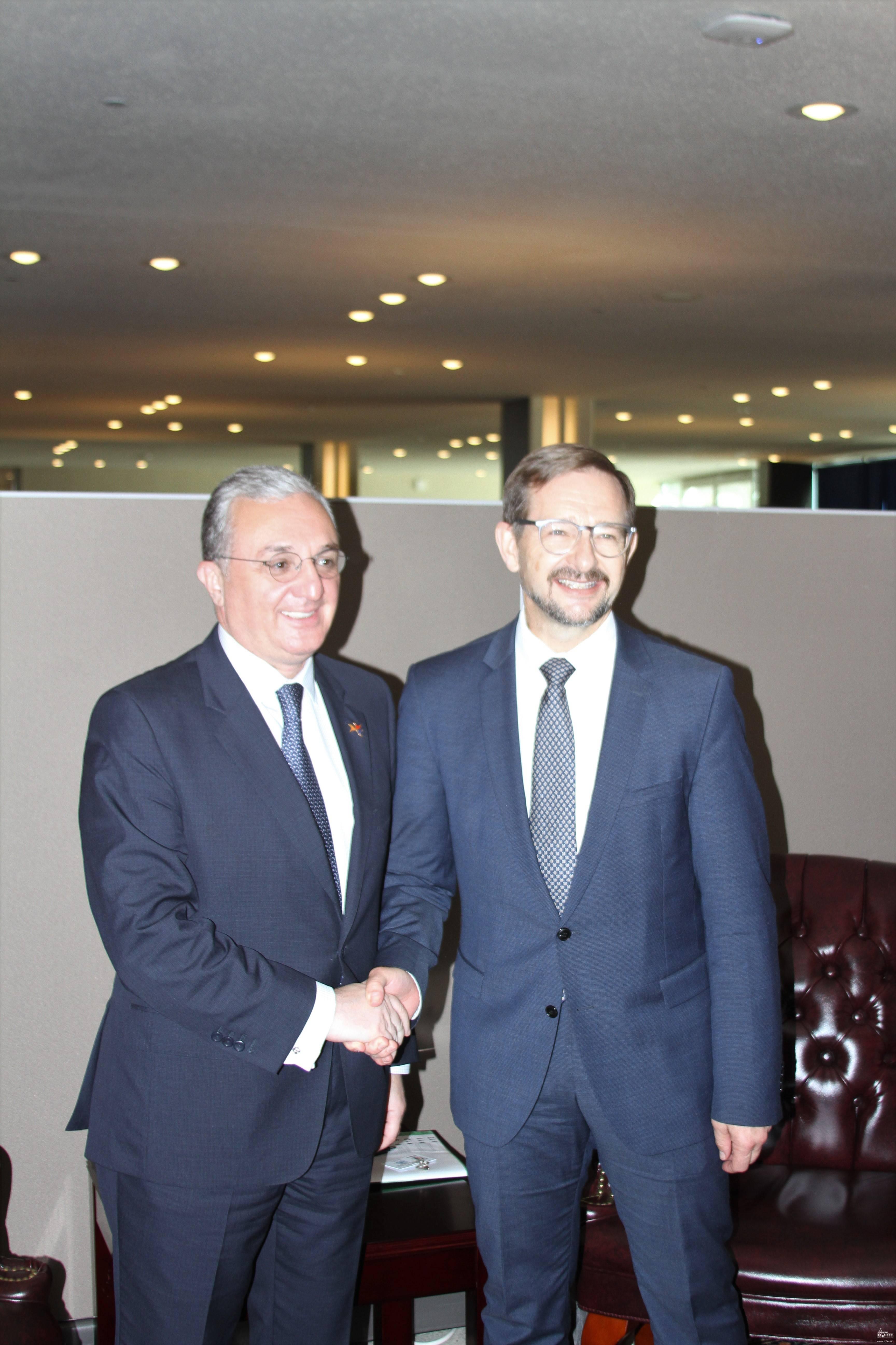 Министр иностранных дел Армении Зограб Мнацаканян встретился с генеральным секретарем ОБСЕ Томасом Гремингером