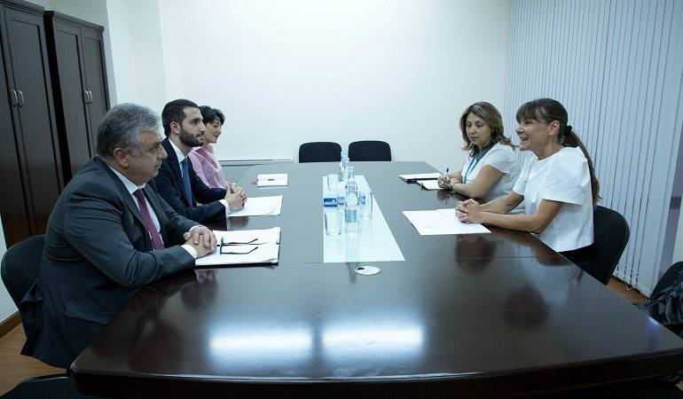 Meeting of Deputy Foreign Minister Ruben Rubinyan with the