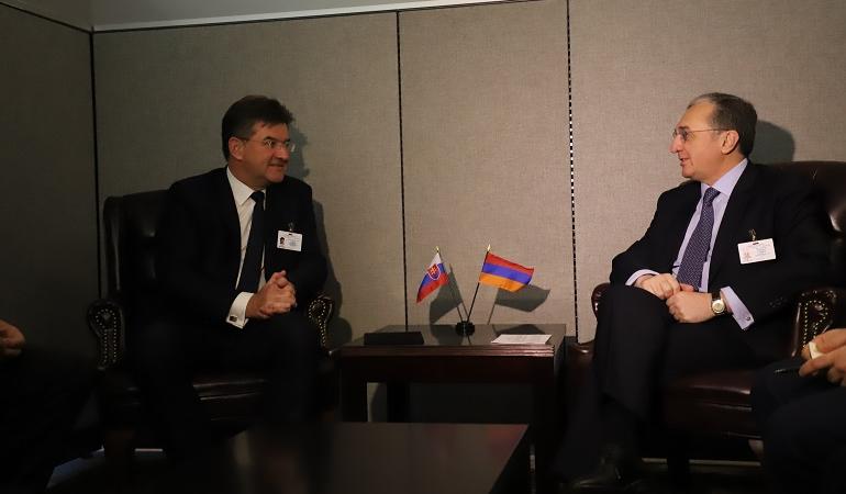 Встреча министров иностранных дел Армении и Словакии